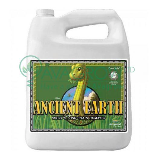 Ancient Earth 4L