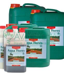 Aqua Flores Family