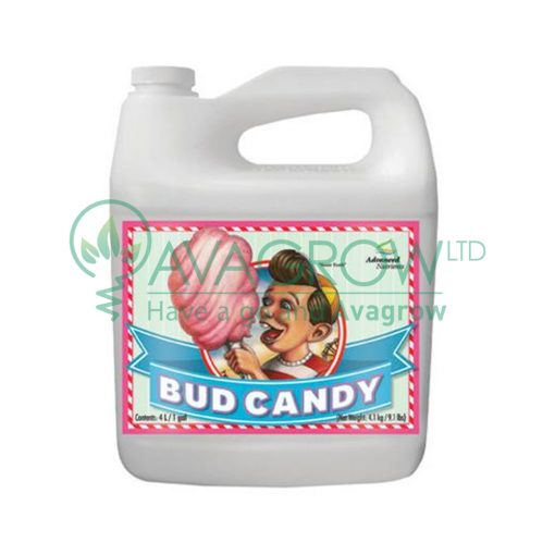 Bud Candy 5L