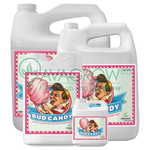 Bud Candy Family
