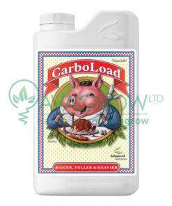 CarboLoad 1L