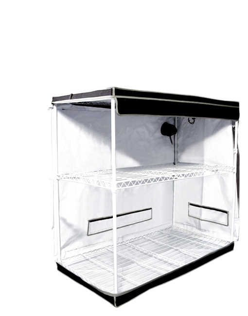 Homebox Evolution Clonebox View