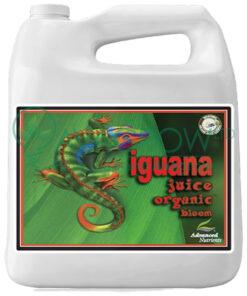 Iguana Juice Bloom 10L