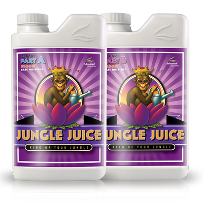 Jungle Juice 2 Part Bloom