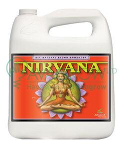 Nirvana 4L