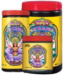 Open Sesame Family