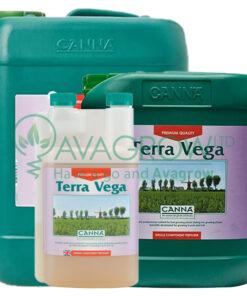 Terra Vega Family