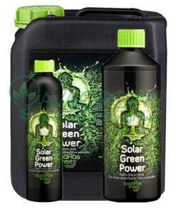 Buddhas Tree Solar Green Power Family