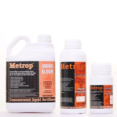 Metrop Amino Bloom