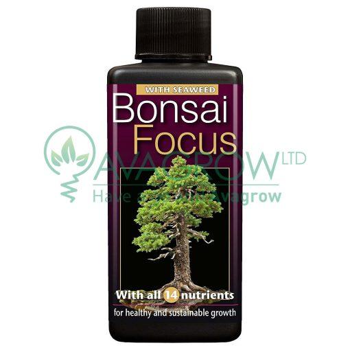 Bonsai Focus 300 ML