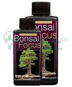 Bonsai Focus family