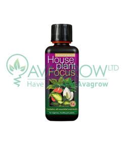 House Plant Focus 100ML