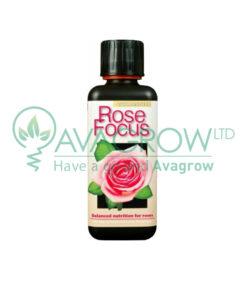 Rose Focus 100ML
