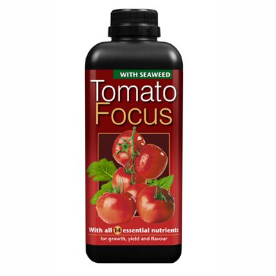Tomato Focus