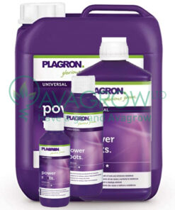 Plagron Power Roots Family