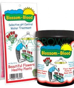 Blossom Blood