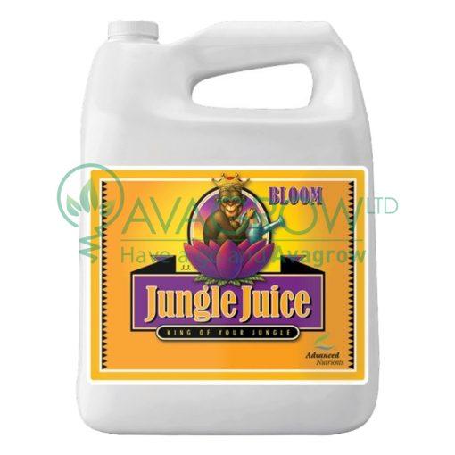 Jungle Juice 3 Part - Bloom 4L