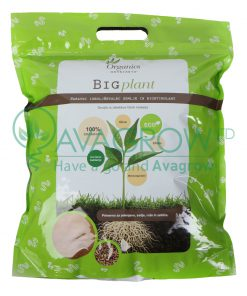 Big Plant 3kg