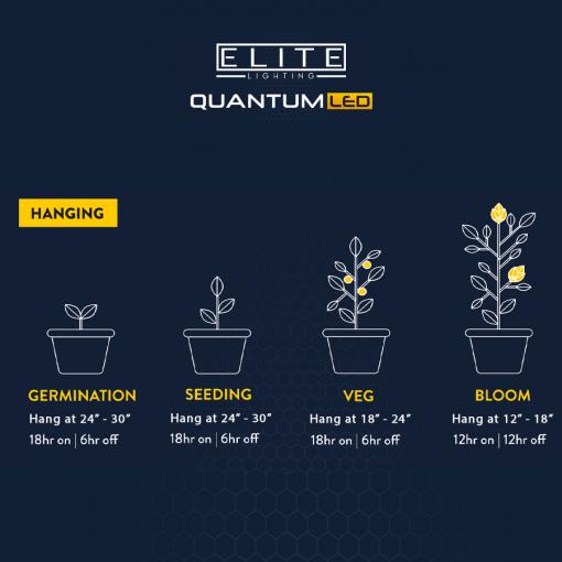 Elite Quantum light hanging guide